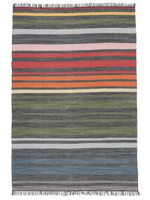 Rainbow Stripe - Grå Matta 160X230 Äkta Modern Handvävd Ljusgrå/Mörkgrå (Bomull, Indien)