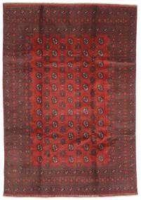 Afghan Matta 200X288 Äkta Orientalisk Handknuten Mörkröd/Mörkbrun (Ull, Afghanistan)