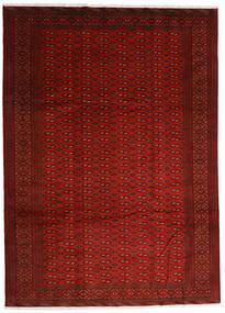 Turkaman Matta 248X340 Äkta Orientalisk Handknuten Röd/Roströd (Ull, Persien/Iran)
