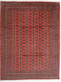 Pakistan Bokhara 2Ply Matta 246X325 Äkta Orientalisk Handknuten Mörkröd/Roströd (Ull, Pakistan)