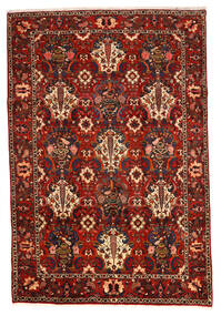 Bakhtiar Collectible Matta 207X307 Äkta Orientalisk Handknuten Mörkbrun/Roströd/Mörkröd (Ull, Persien/Iran)