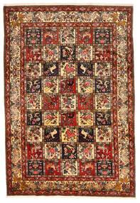 Bakhtiar Collectible Matta 212X311 Äkta Orientalisk Handknuten Mörkröd/Mörkbrun (Ull, Persien/Iran)